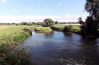 River Lugg at Sutton St Nicholas
